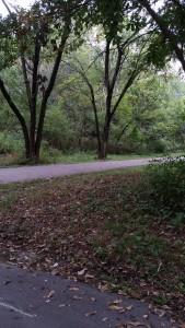 2015-09-29 Sar-ko-mo park trail 009